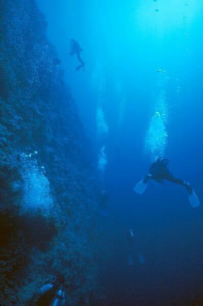 scuba dive Peleliu Wall