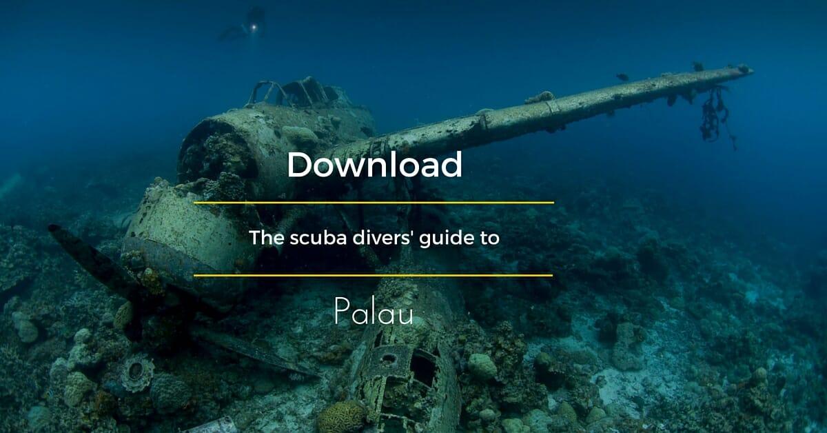 The scuba divers' guide to Palau