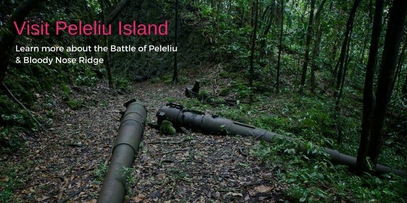 Peleliu Island the Battle of Peleliu and Bloody Nose Ridge