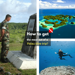 6 divers' inside tips on how to get the most out of a dive trip to Palau