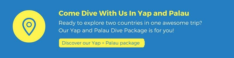 discover our yap and palau dive package