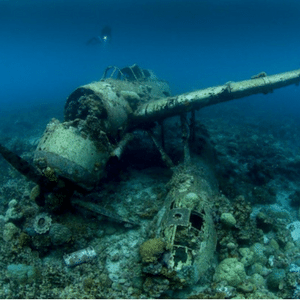 Wreck Diving Palau: 6 Amazing WWII Wrecks in Palau You Should Dive