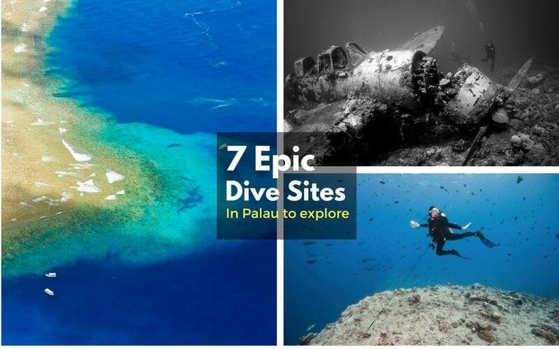 Micronesia Diving Holidays | travel&co. |Palau Dive Destinations