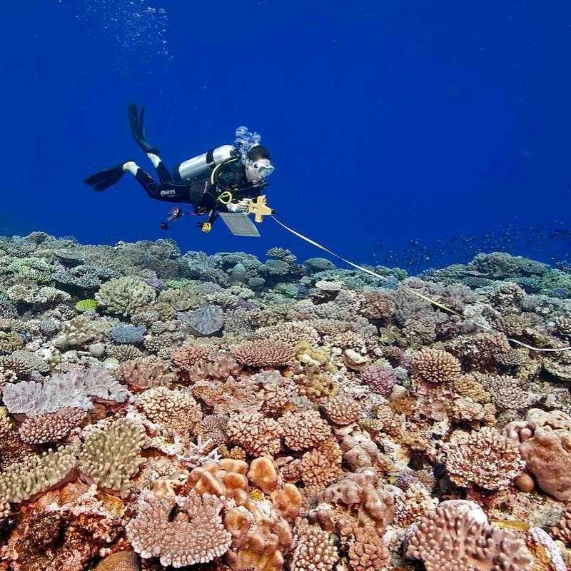 Marine Environmental Science